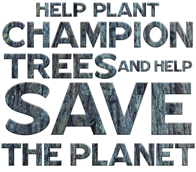 Help Plant Champion Trees and Help Save the Planet