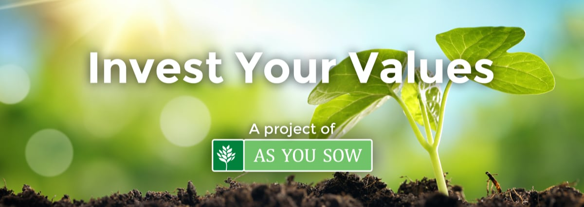 Invest Your Values